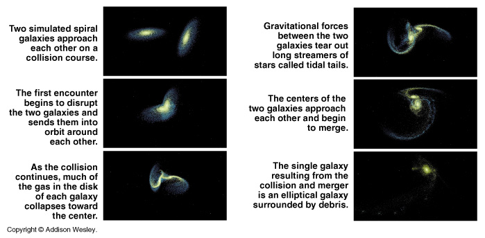 Giant elliptical galaxies in the centers of clusters have ...